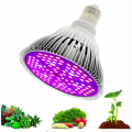 Lampada LED Grow Full Spectrum 30 W
