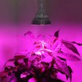Lampada LED Grow Full Spectrum 80 W